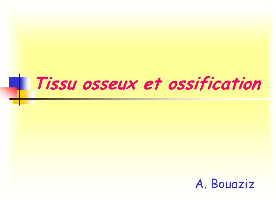 Tissu osseux et ossification A. Bouaziz