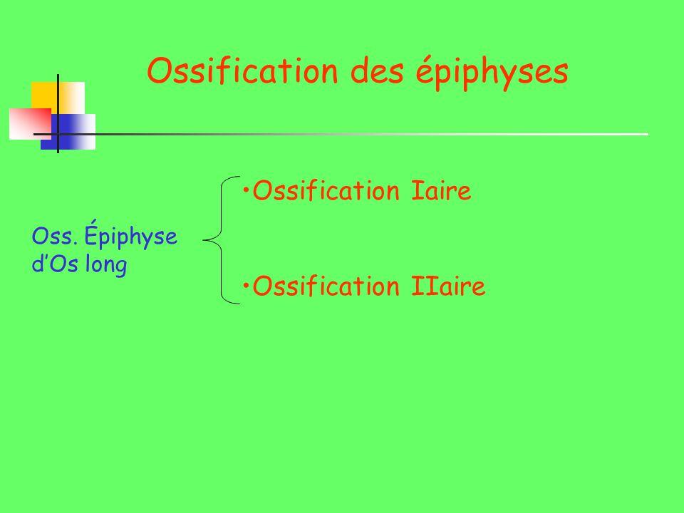 Ossification des épiphyses Oss. Épiphyse dOs long Ossification Iaire Ossification IIaire