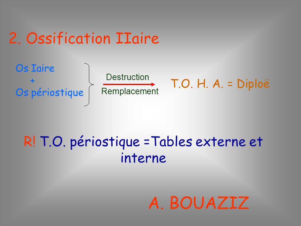2. Ossification IIaire Os Iaire + Os périostique Destruction Remplacement T.O. H. A. = Diploë R! T.O. périostique =Tables externe et interne A. BOUAZI