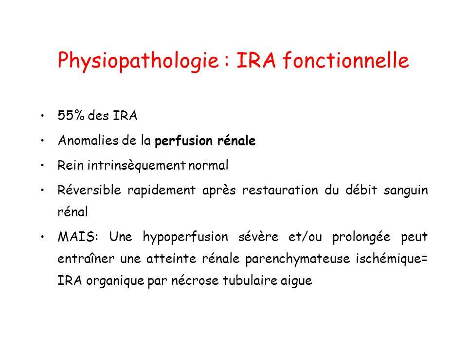 Physiopathologie : IRA fonctionnelle 55% des IRA Anomalies de la perfusion rénale Rein intrinsèquement normal Réversible rapidement après restauration