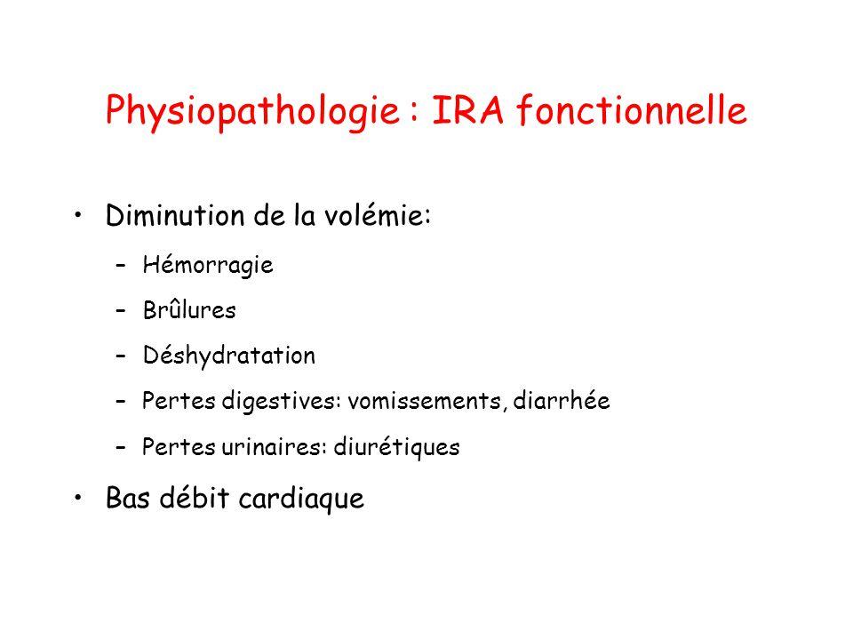Physiopathologie : IRA fonctionnelle Diminution de la volémie: –Hémorragie –Brûlures –Déshydratation –Pertes digestives: vomissements, diarrhée –Perte