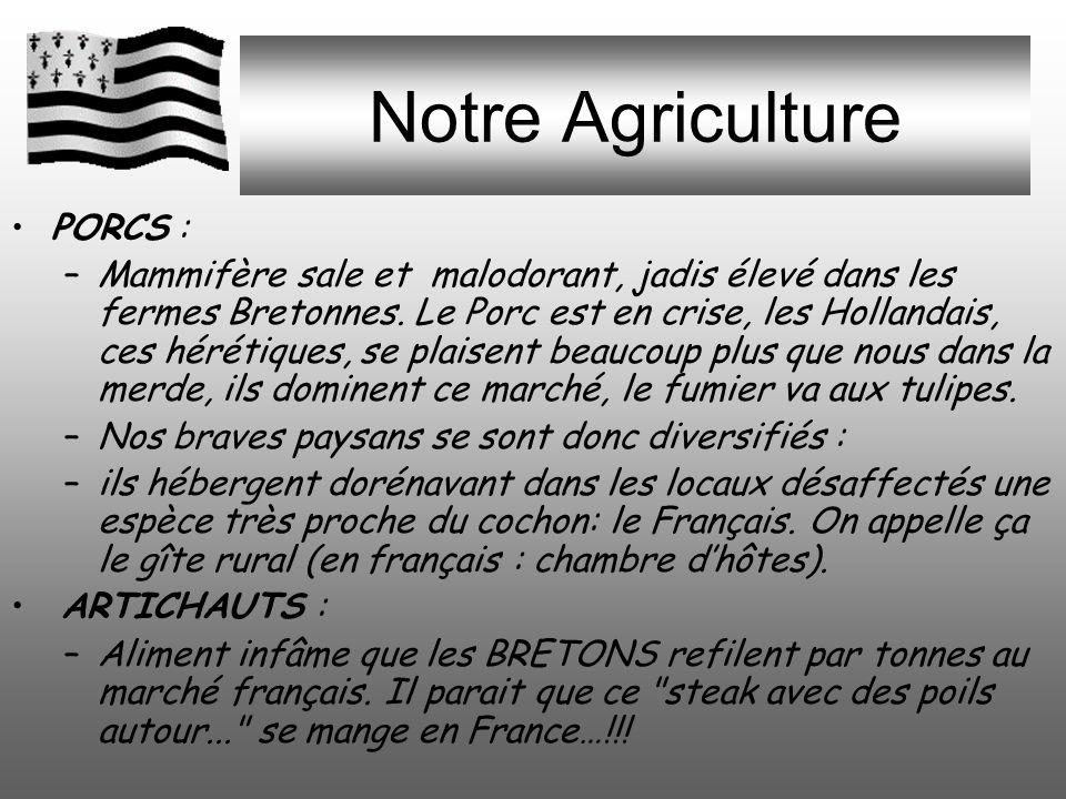 Notre Agriculture PORCS : –Mammifère sale et malodorant, jadis élevé dans les fermes Bretonnes.