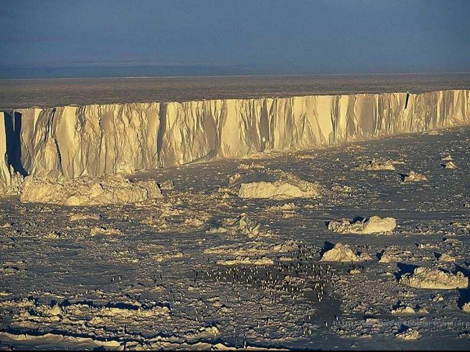 LAntarctique, est une immense terre gelée, grande comme une fois et demie lEurope, et recouverte de la plus grande calotte glaciaire du monde. La chap
