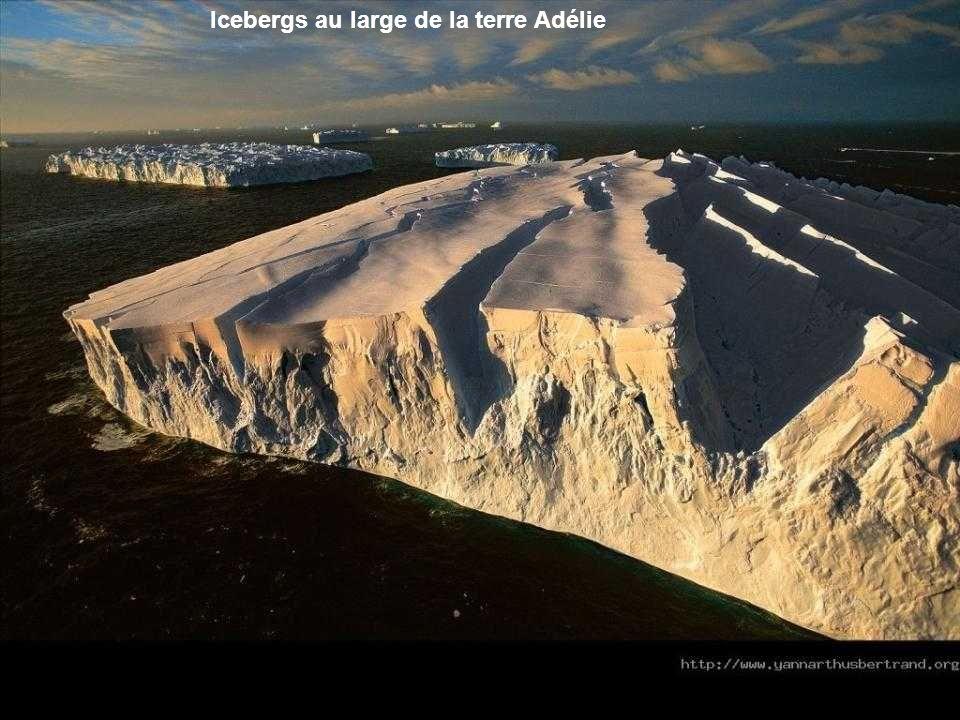 Banquise de Ross, et Mont Érebus, golfe de Mac Murdo. Cest à partir des trois grandes banquises de la côte antarctique – grande barrière de Ross, Filc