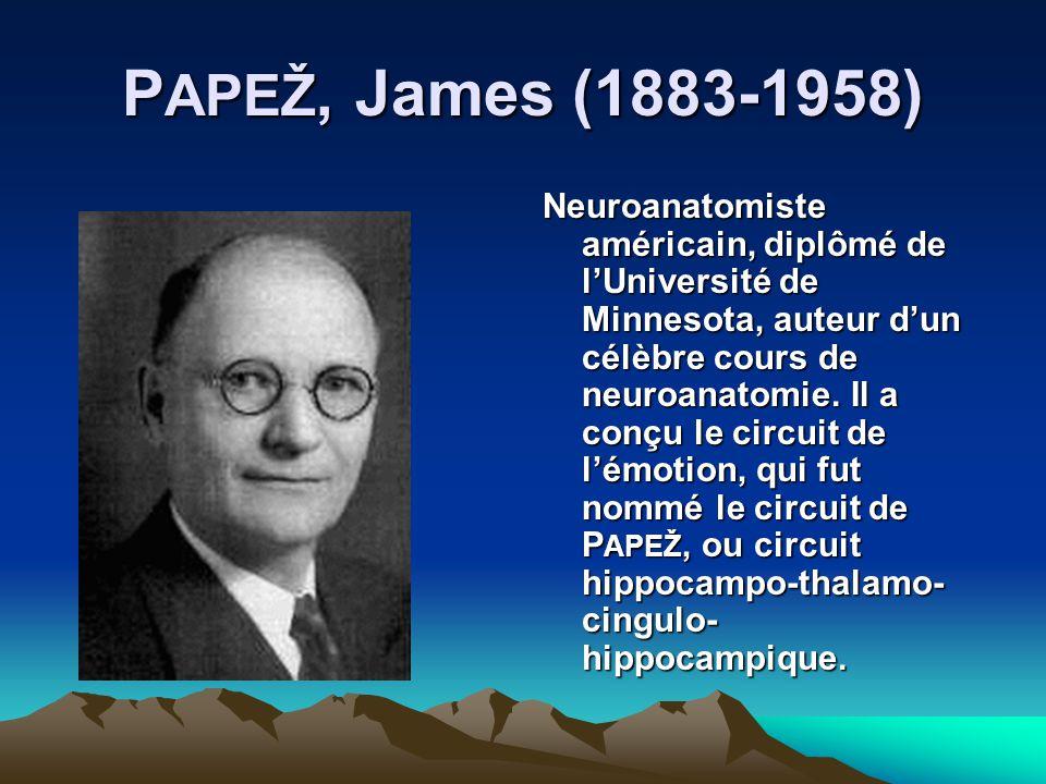 P APEŽ, James (1883-1958) Neuroanatomiste américain, diplômé de lUniversité de Minnesota, auteur dun célèbre cours de neuroanatomie. Il a conçu le cir