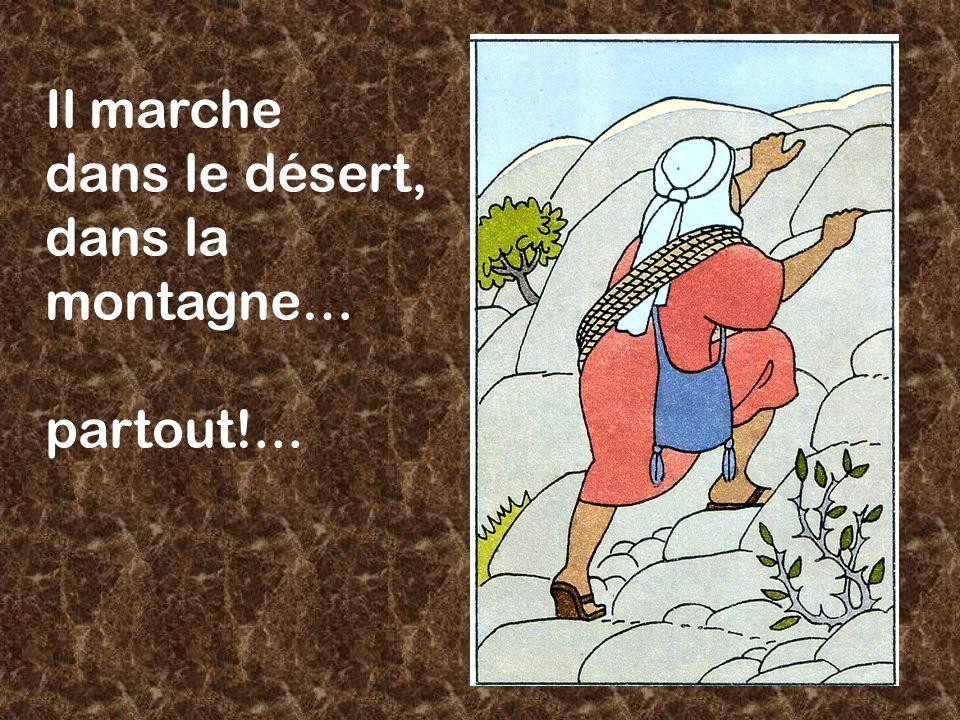 Il marche dans le désert, dans la montagne… partout!...