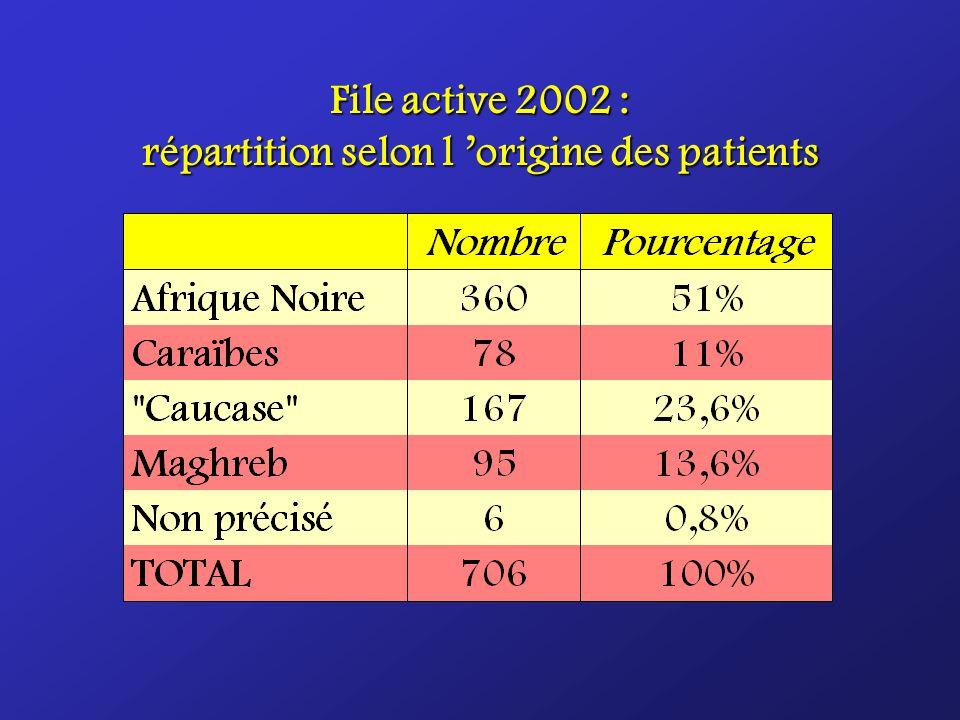 File active 2002 : répartition selon l origine des patients