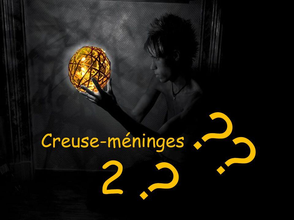 Creuse-méninges 2 ?? ?