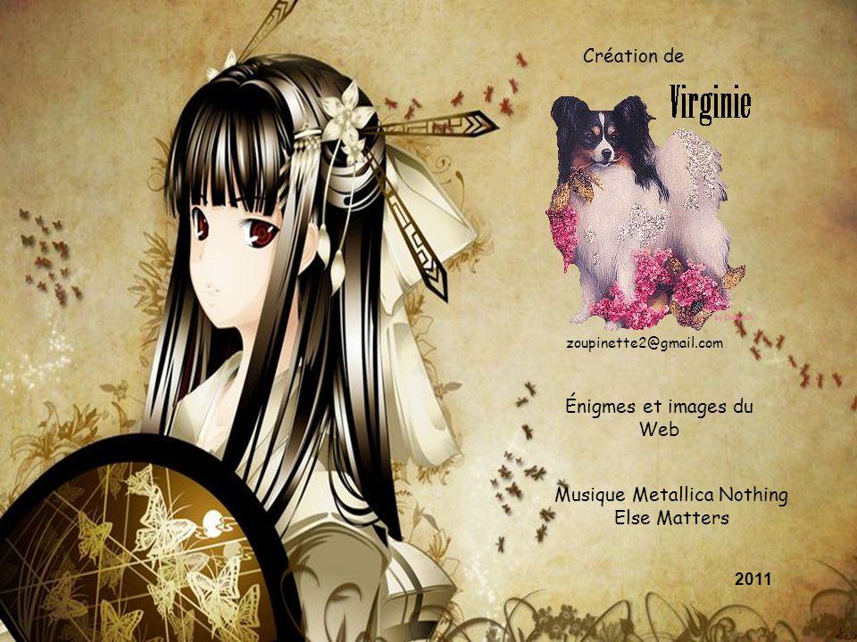 Création de zoupinette2@gmail.com Énigmes et images du Web Musique Metallica Nothing Else Matters 2011