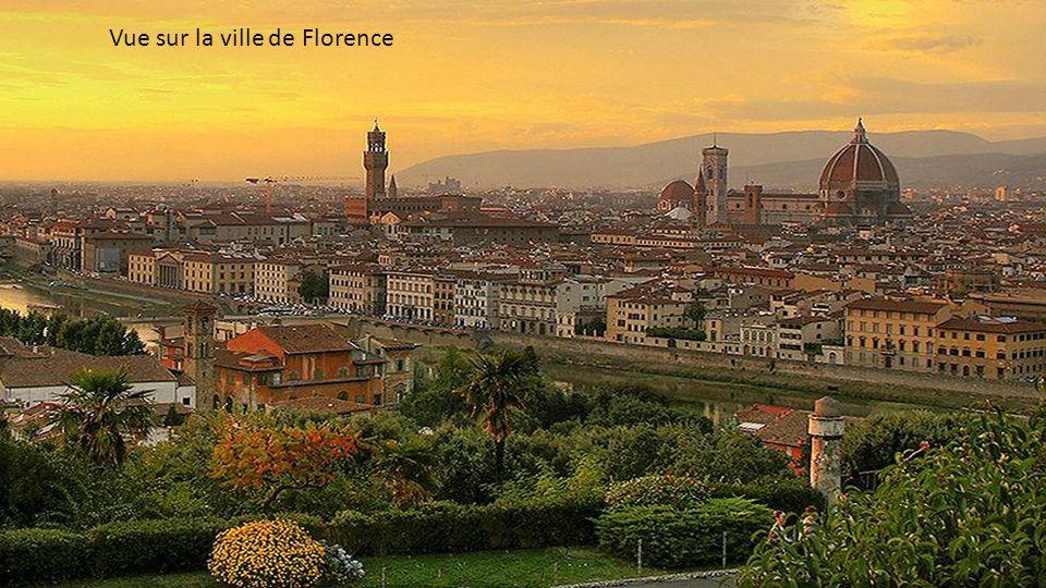 Vue sur la ville de Florence