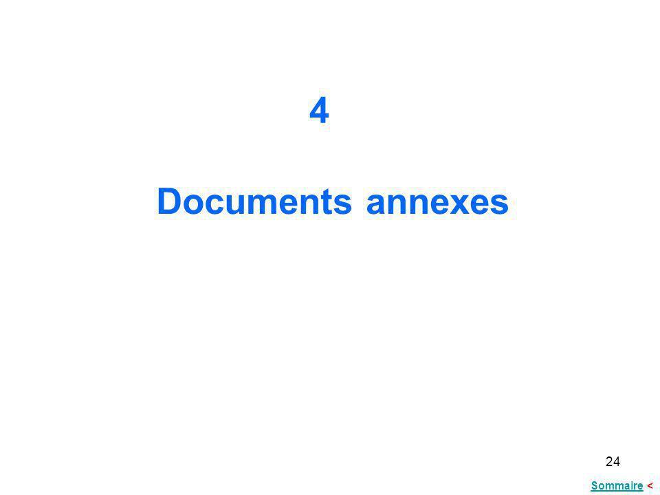 24 Documents annexes 4 SommaireSommaire <