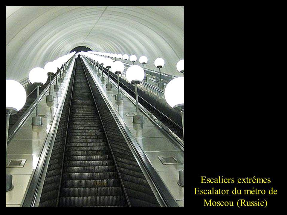 Escaliers extrêmes Montagne de Bueren (Belgique)