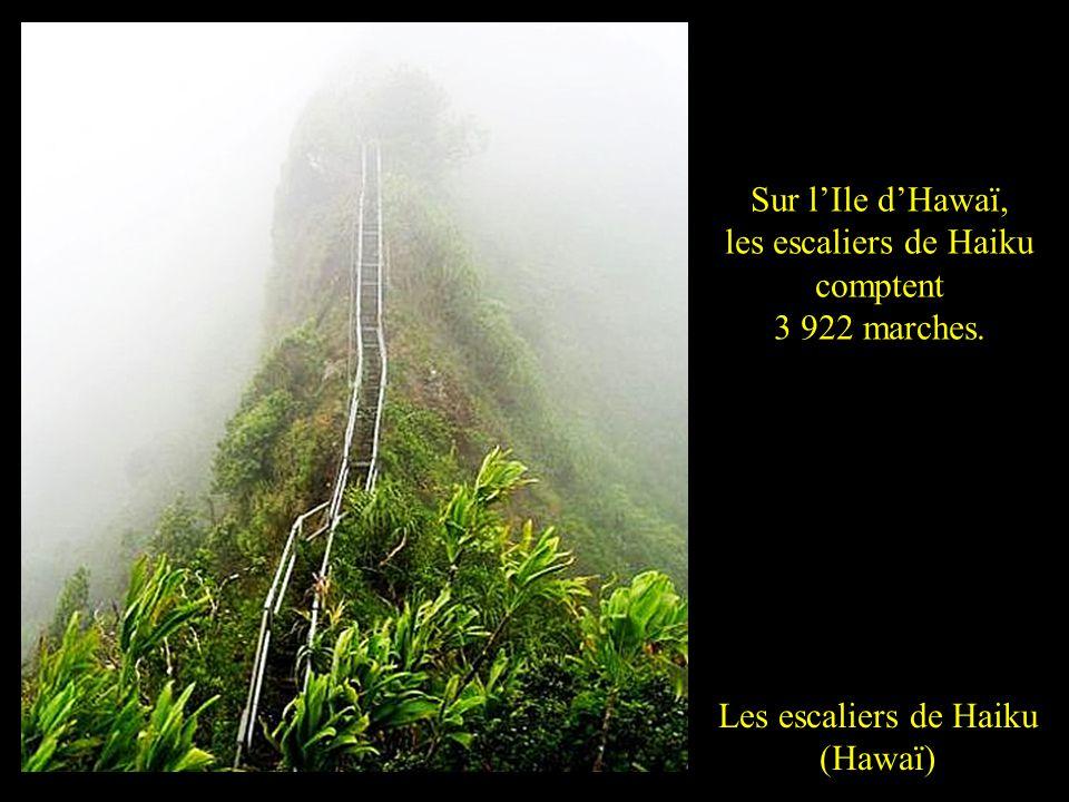 Les escaliers de Haiku (Hawaï) Sur lIle dHawaï, les escaliers de Haiku comptent 3 922 marches.