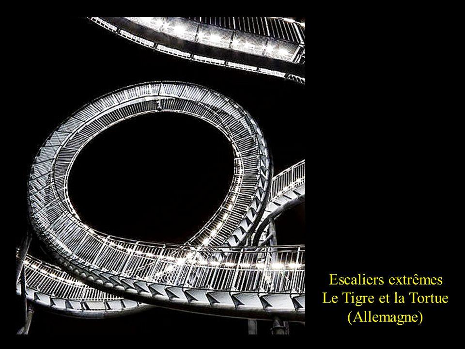 En Allemagne, le Tigre et la Tortue est un magnifique escalier qui soffre aux visiteurs. Certes, il ne mène nulle part mais sa forme originale suffit