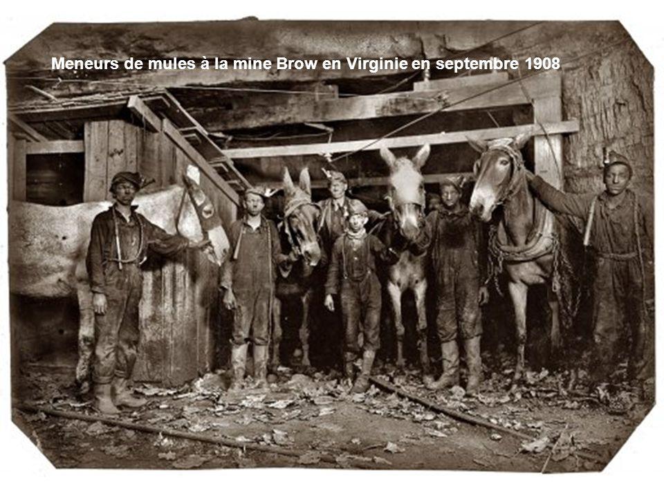 Mineur du Kentuky en octobre 1935
