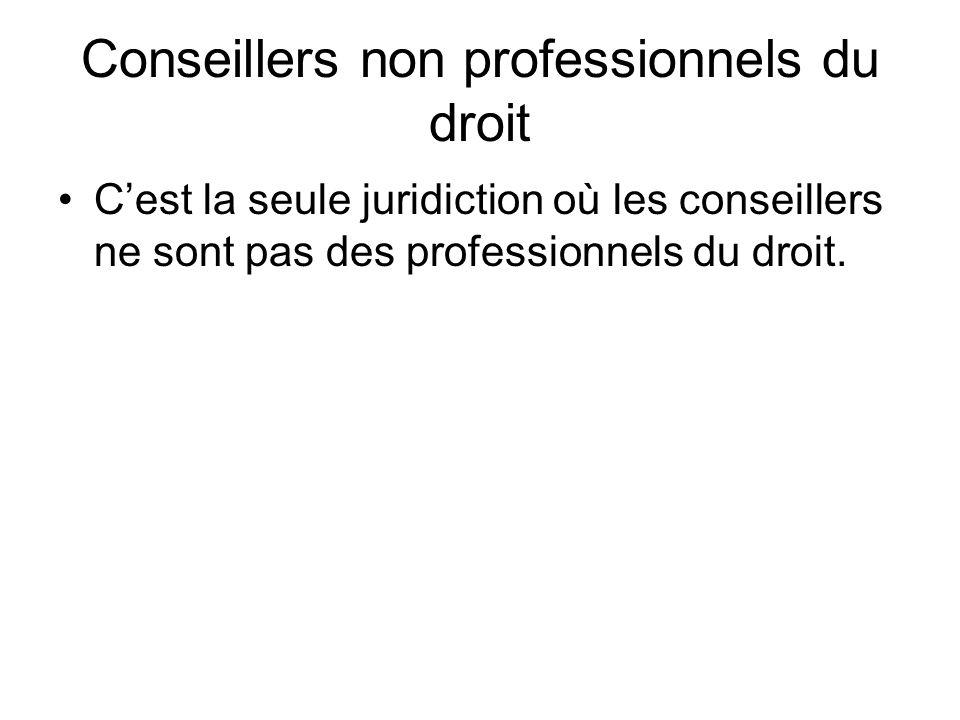 Conseillers non professionnels du droit Cest la seule juridiction où les conseillers ne sont pas des professionnels du droit.