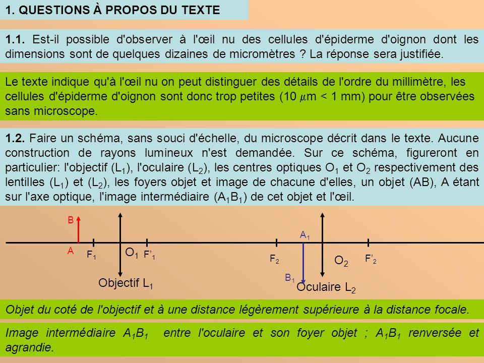 3 1.3.Dans le texte, l auteur mentionne le terme image intermédiaire .