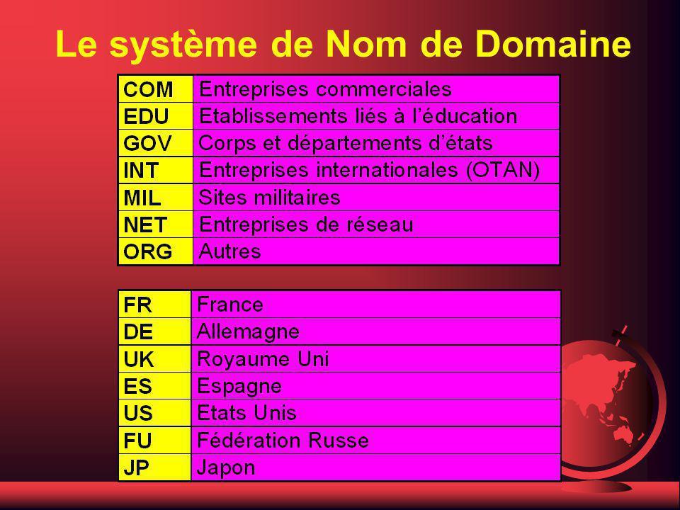 Le système de Nom de Domaine F Les zones sont réparties en deux catégories : F les zones à trois lettres identifiant la fonction du site (ex :.com) F