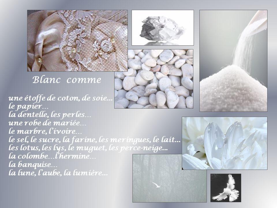 Blanc comme une étoffe de coton, de soie... le papier… la dentelle, les perles… une robe de mariée… le marbre, livoire… le sel, le sucre, la farine, l