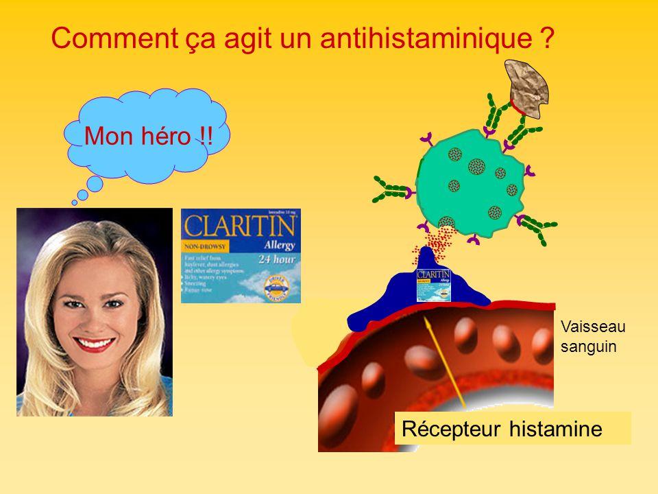 Comment ça agit un antihistaminique ? Mon héro !! Récepteur histamine Vaisseau sanguin