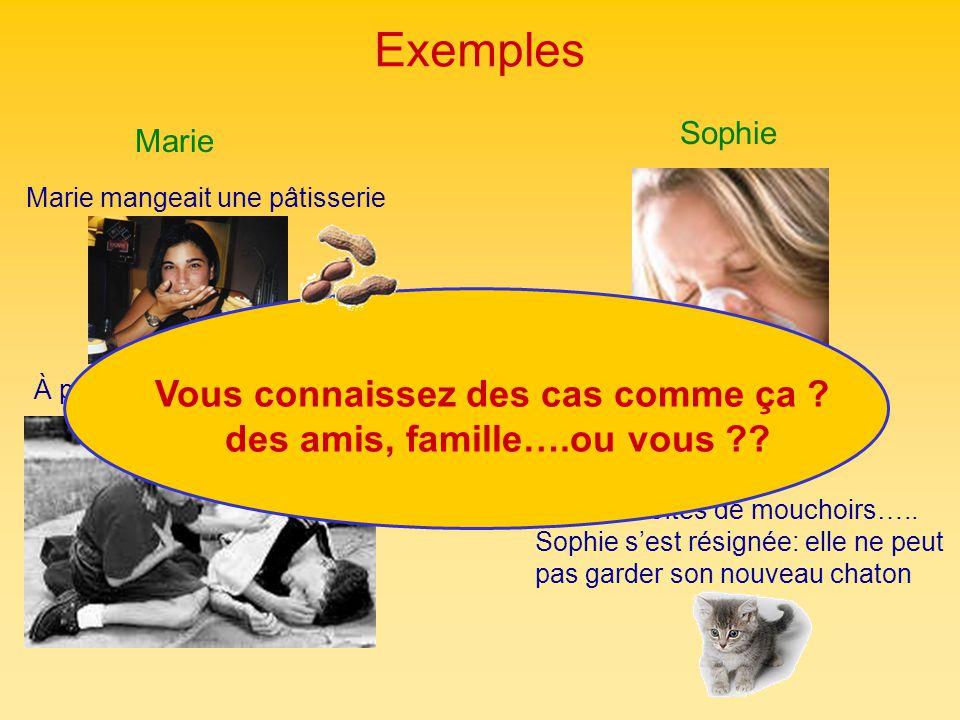 Exemples Marie Marie mangeait une pâtisserie Sophie Après 4 boîtes de mouchoirs….. Sophie sest résignée: elle ne peut pas garder son nouveau chaton À