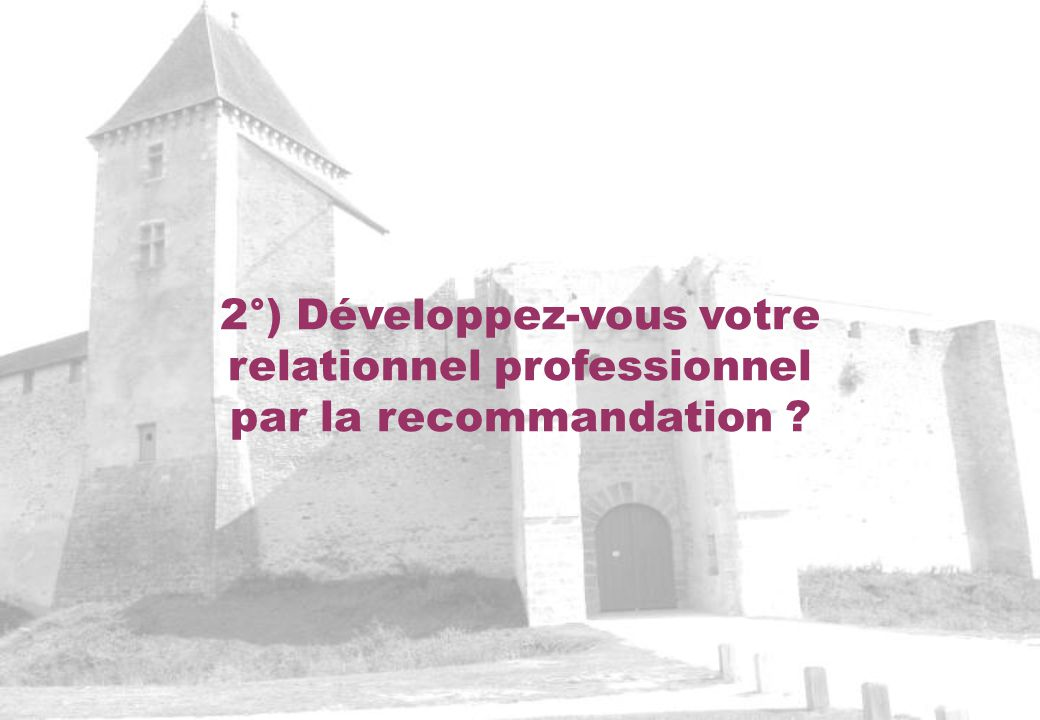 2°) Développez-vous votre relationnel professionnel par la recommandation ?