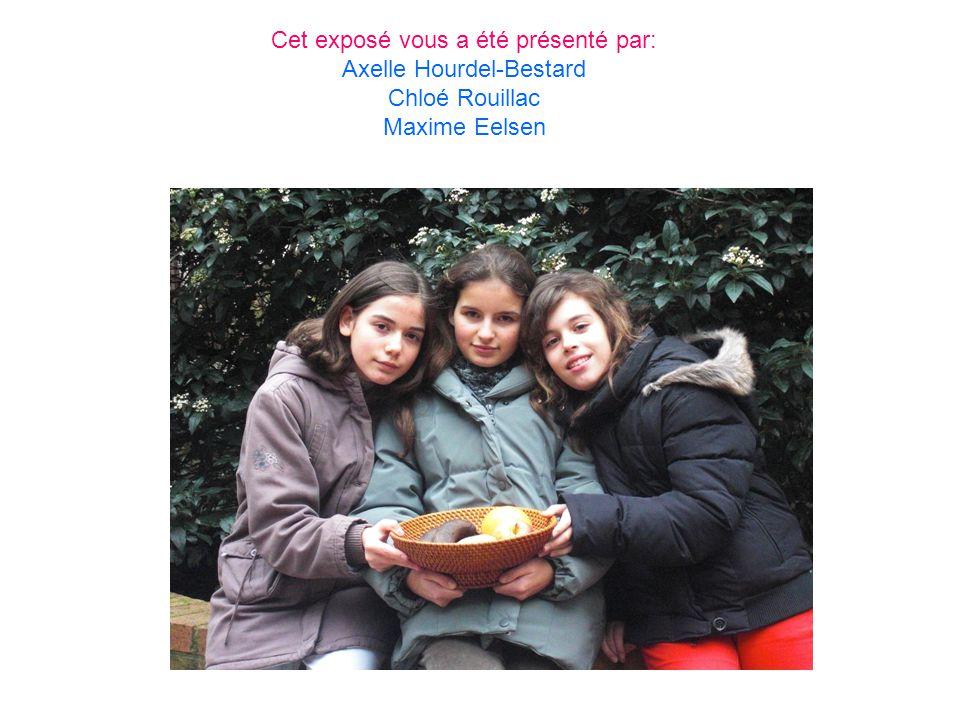 Cet exposé vous a été présenté par: Axelle Hourdel-Bestard Chloé Rouillac Maxime Eelsen