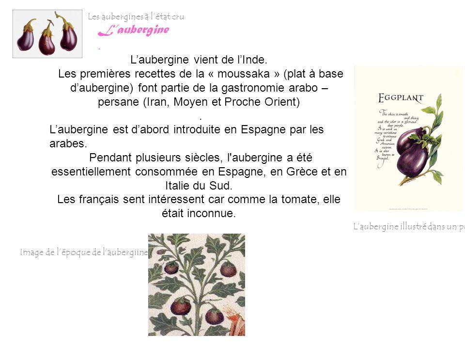 Laubergine. Laubergine vient de lInde. Les premières recettes de la « moussaka » (plat à base daubergine) font partie de la gastronomie arabo – persan