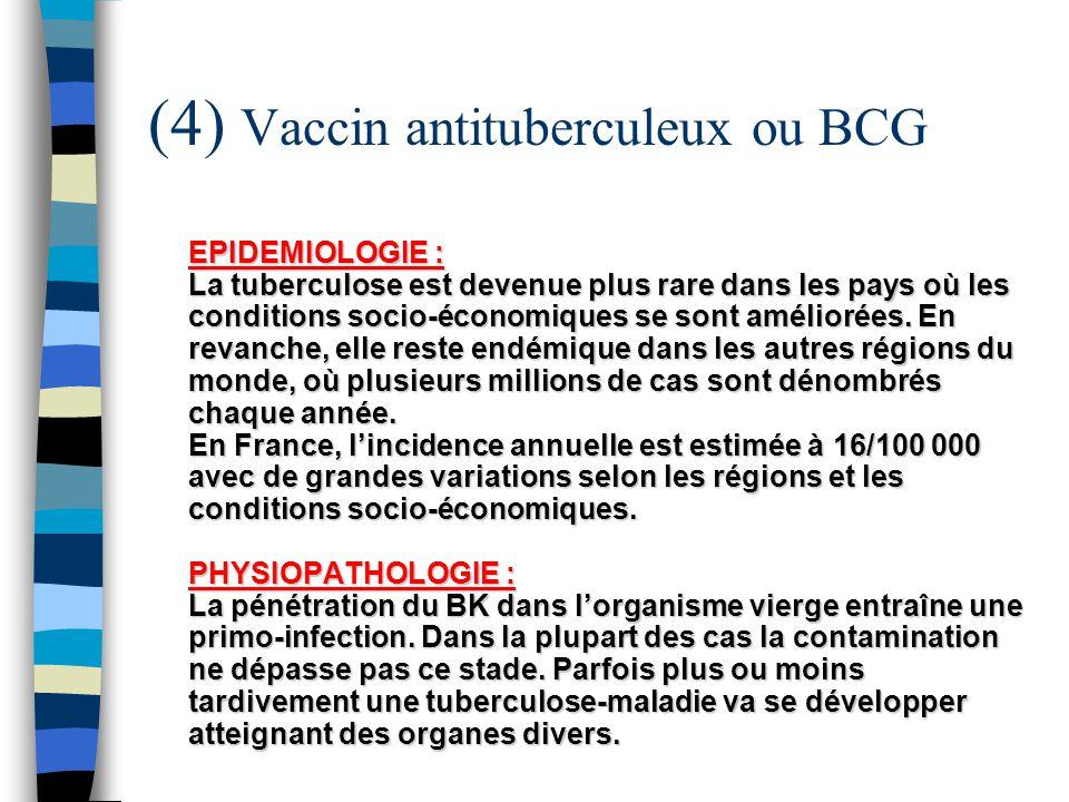 (4) Vaccin antituberculeux ou BCG EPIDEMIOLOGIE : La tuberculose est devenue plus rare dans les pays où les conditions socio-économiques se sont améli