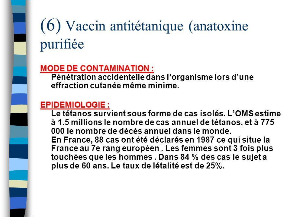 (6) Vaccin antitétanique (anatoxine purifiée MODE DE CONTAMINATION : MODE DE CONTAMINATION : Pénétration accidentelle dans lorganisme lors dune effrac