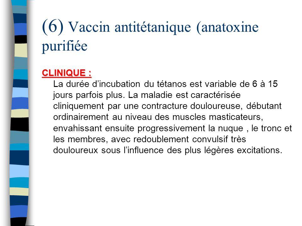 (6) Vaccin antitétanique (anatoxine purifiée CLINIQUE : CLINIQUE : La durée dincubation du tétanos est variable de 6 à 15 jours parfois plus. La malad