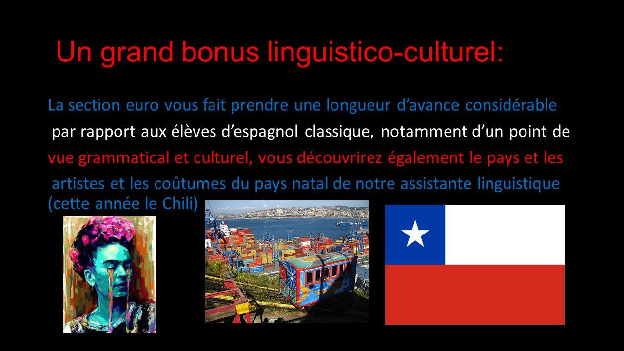 Un grand bonus linguistico-culturel: La section euro vous fait prendre une longueur davance considérable par rapport aux élèves despagnol classique, notamment dun point de vue grammatical et culturel, vous découvrirez également le pays et les artistes et les coûtumes du pays natal de notre assistante linguistique (cette année le Chili)