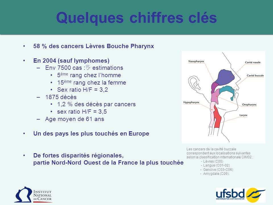 Quelques chiffres clés 58 % des cancers Lèvres Bouche Pharynx En 2004 (sauf lymphomes) –Env 7500 cas : estimations 5 ème rang chez lhomme 15 ème rang