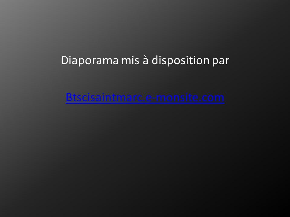 Diaporama mis à disposition par Btscisaintmarc.e-monsite.com