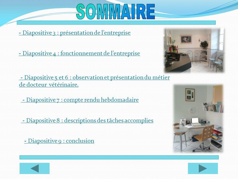 - Diapositive 3 : présentation de lentreprise - Diapositive 4 : fonctionnement de lentreprise - Diapositive 5 et 6 : observation et présentation d - D