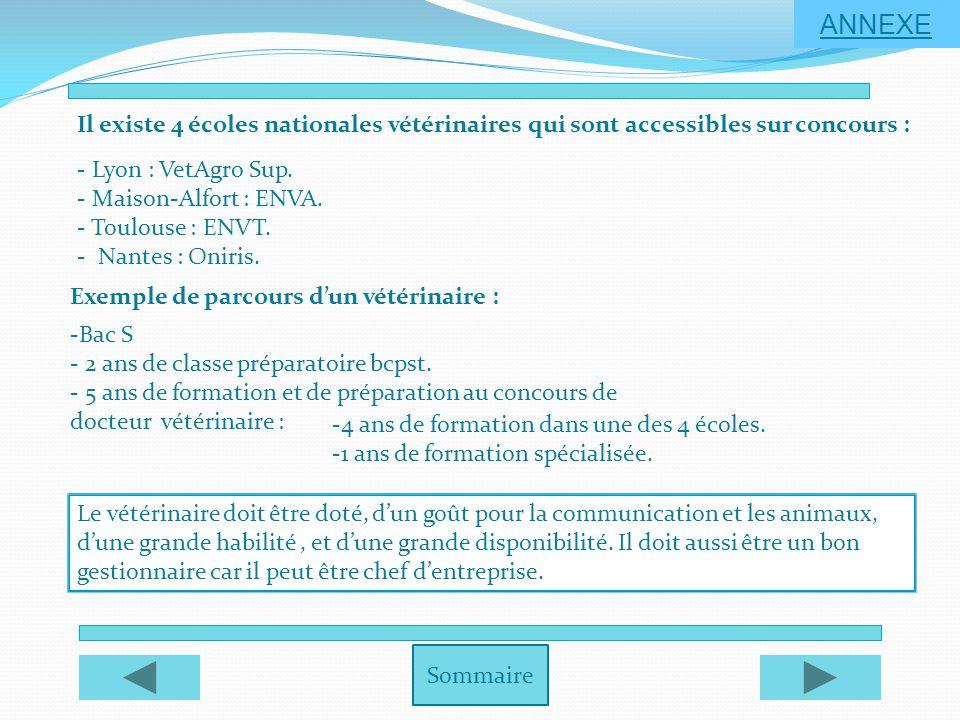 Sommaire ANNEXE Il existe 4 écoles nationales vétérinaires qui sont accessibles sur concours : - Lyon : VetAgro Sup. - Maison-Alfort : ENVA. - Toulous