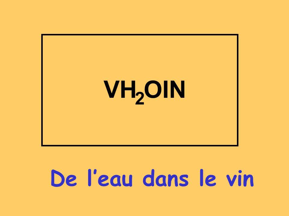 De leau dans le vin VH OIN 2