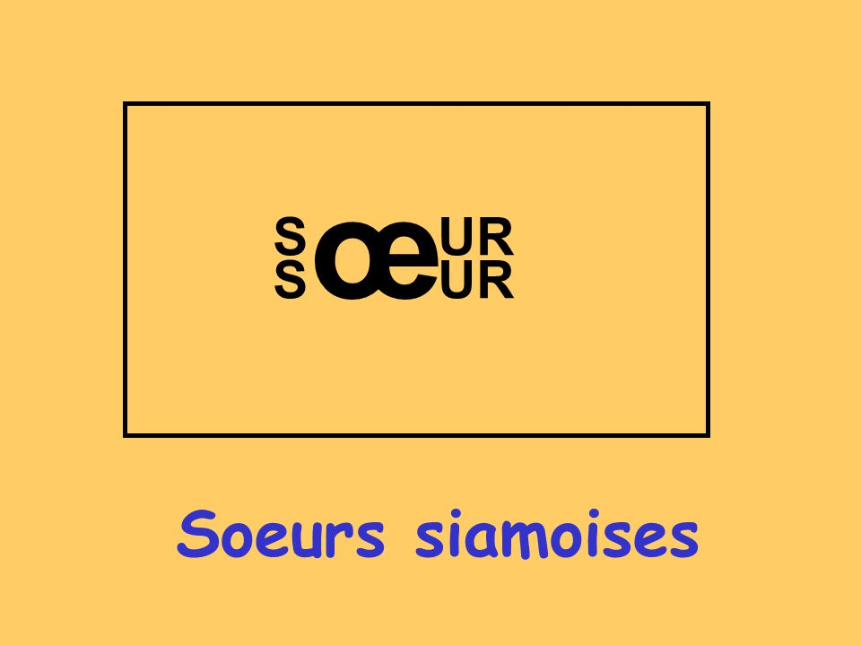 Soeurs siamoises œ S S UR