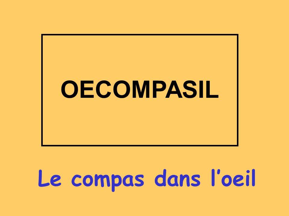 Le compas dans loeil OECOMPASIL