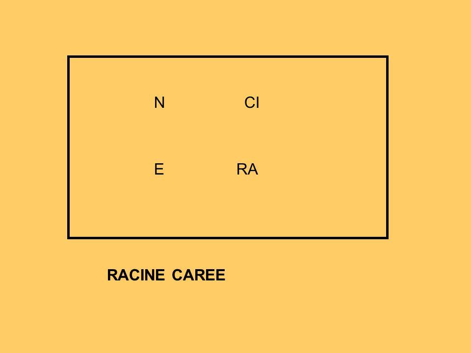 RACINE CAREE RA N E CI