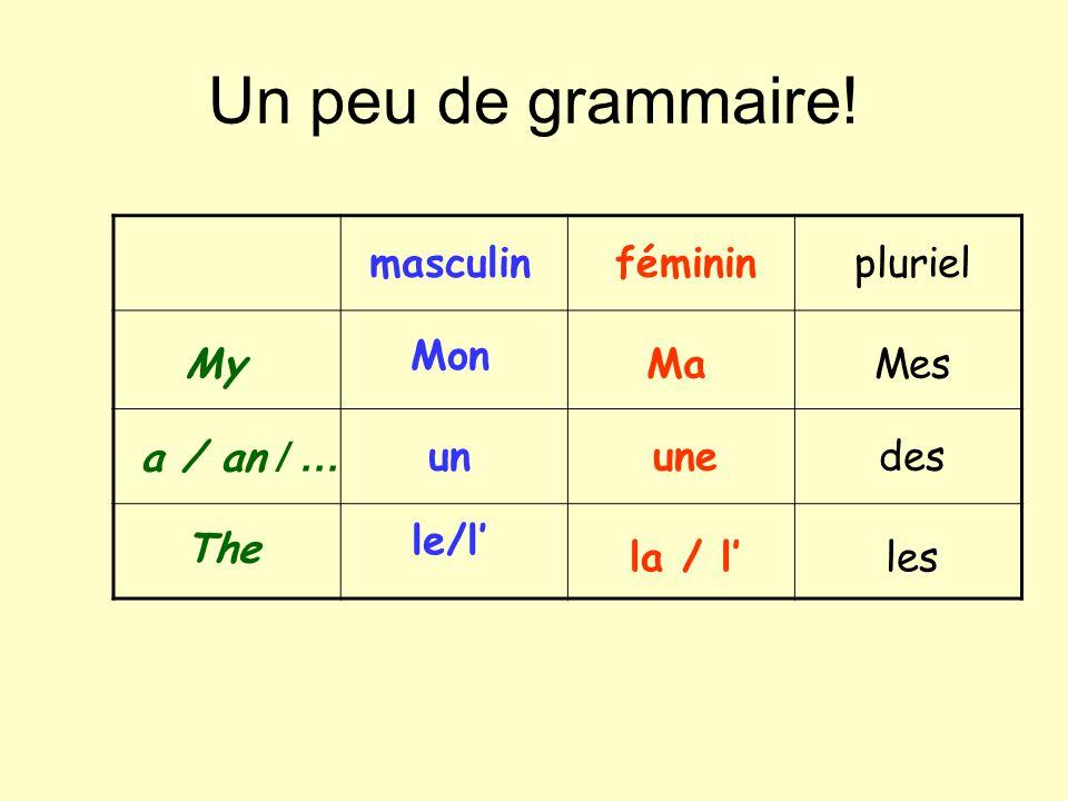 Un peu de grammaire! The My Mon a / an / … Mes un le/l masculin Ma une la / l féminin des les pluriel