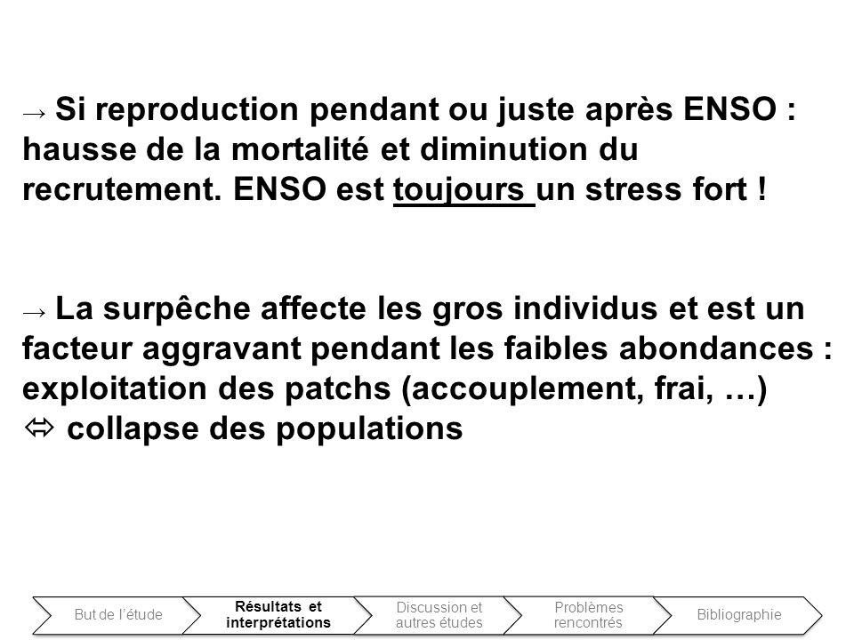 Si reproduction pendant ou juste après ENSO : hausse de la mortalité et diminution du recrutement. ENSO est toujours un stress fort ! La surpêche affe