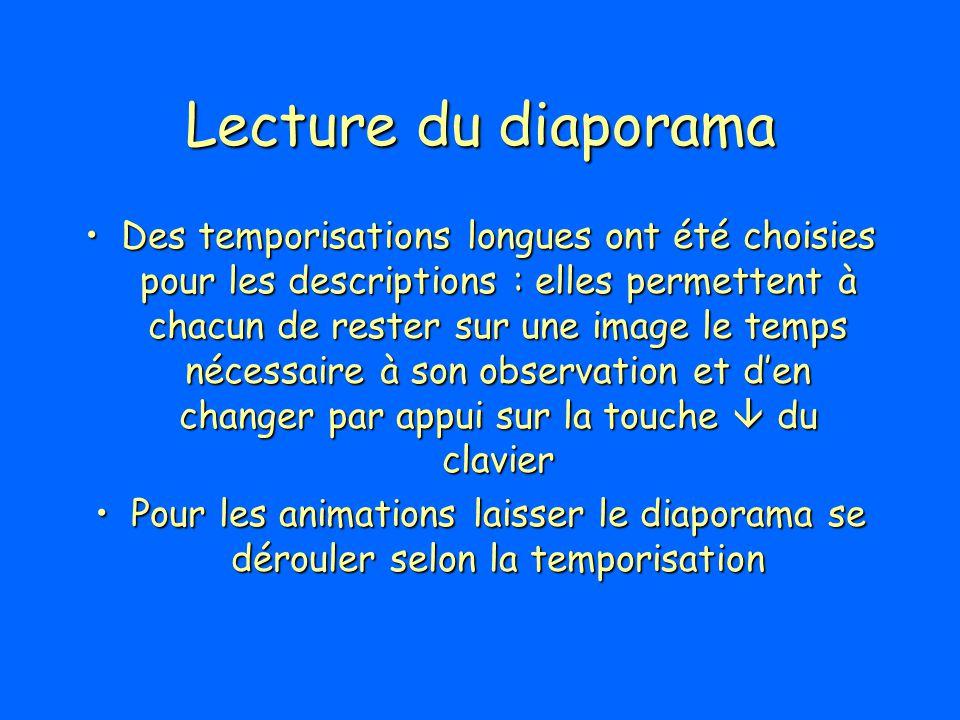 Lecture du diaporama Des temporisations longues ont été choisies pour les descriptions : elles permettent à chacun de rester sur une image le temps né