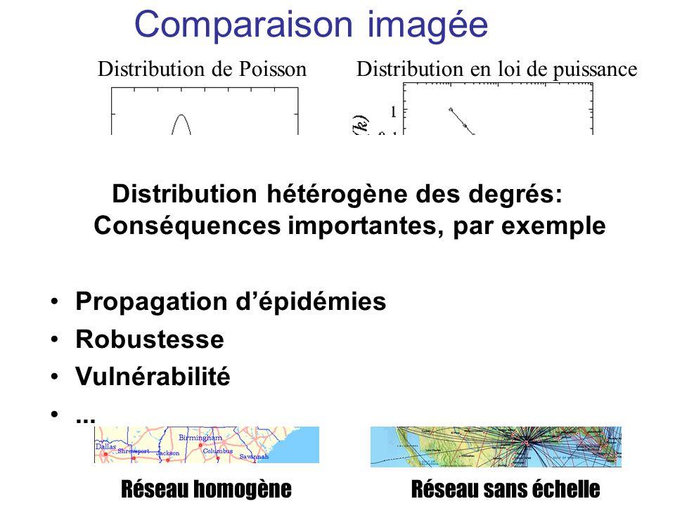 Comparaison imagée Distribution de Poisson Réseau homogène Distribution en loi de puissance Réseau sans échelle Distribution hétérogène des degrés: Co