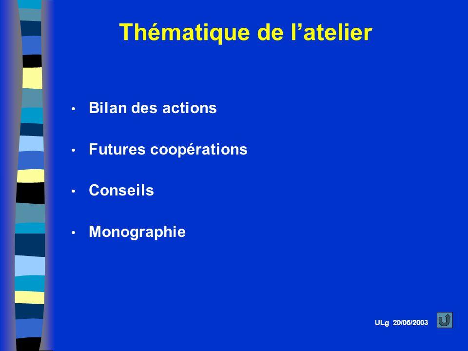 Thématique de latelier ULg 20/05/2003 Bilan des actions Futures coopérations Conseils Monographie