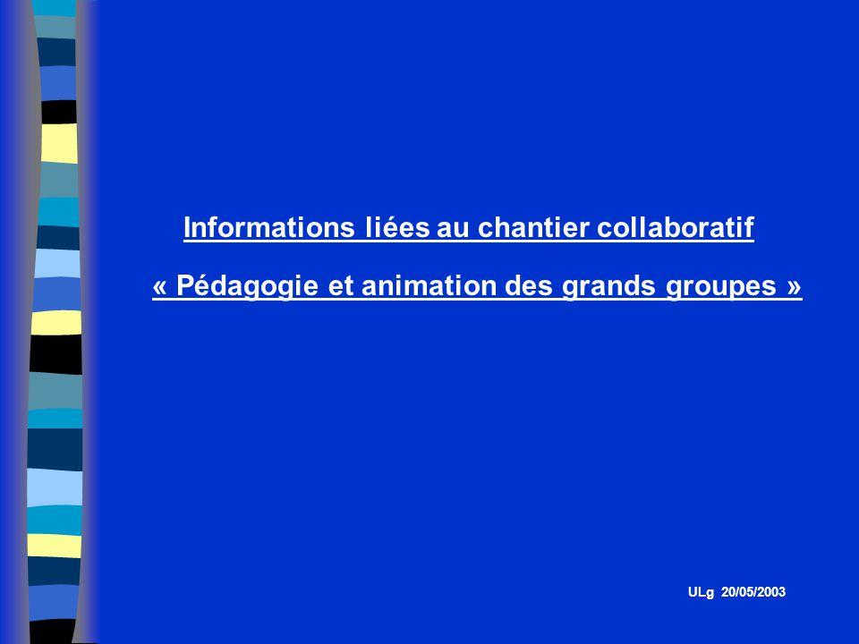 Informations liées au chantier collaboratif « Pédagogie et animation des grands groupes » ULg 20/05/2003