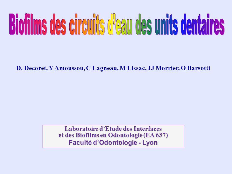 D. Decoret, Y Amoussou, C Lagneau, M Lissac, JJ Morrier, O Barsotti Laboratoire dEtude des Interfaces et des Biofilms en Odontologie (EA 637) Faculté