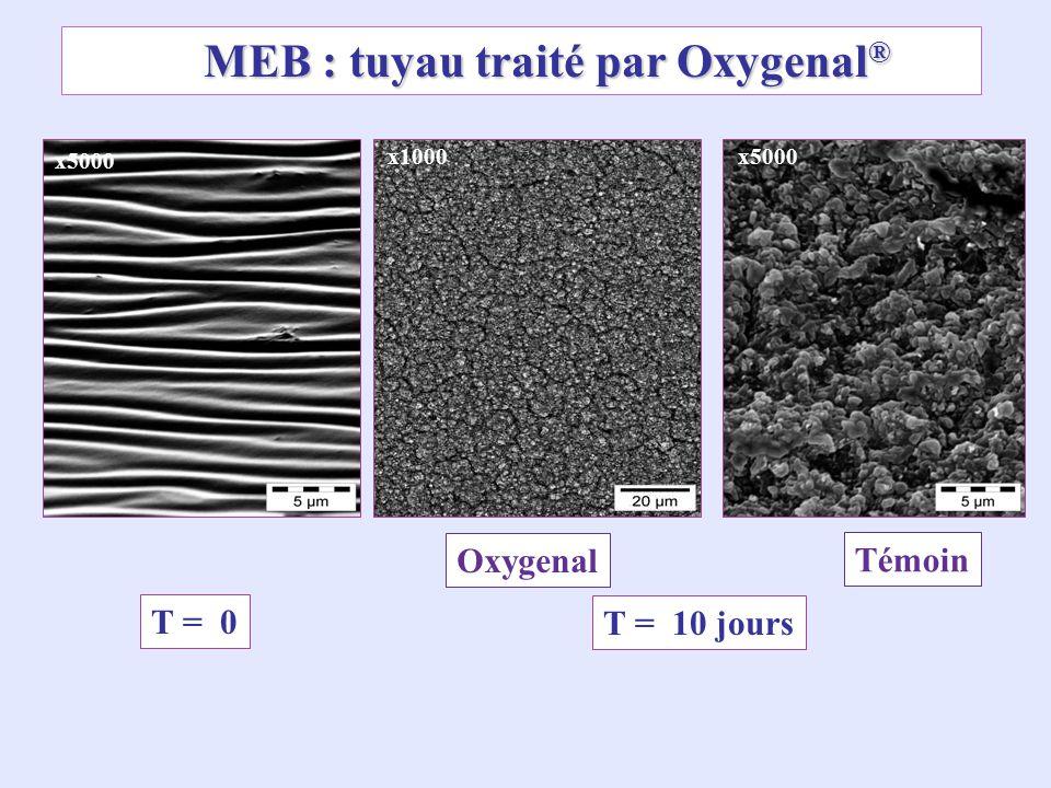 MEB : tuyau traité par Oxygenal ® x1000 T = 10 jours T = 0 x5000 Témoin Oxygenal x5000
