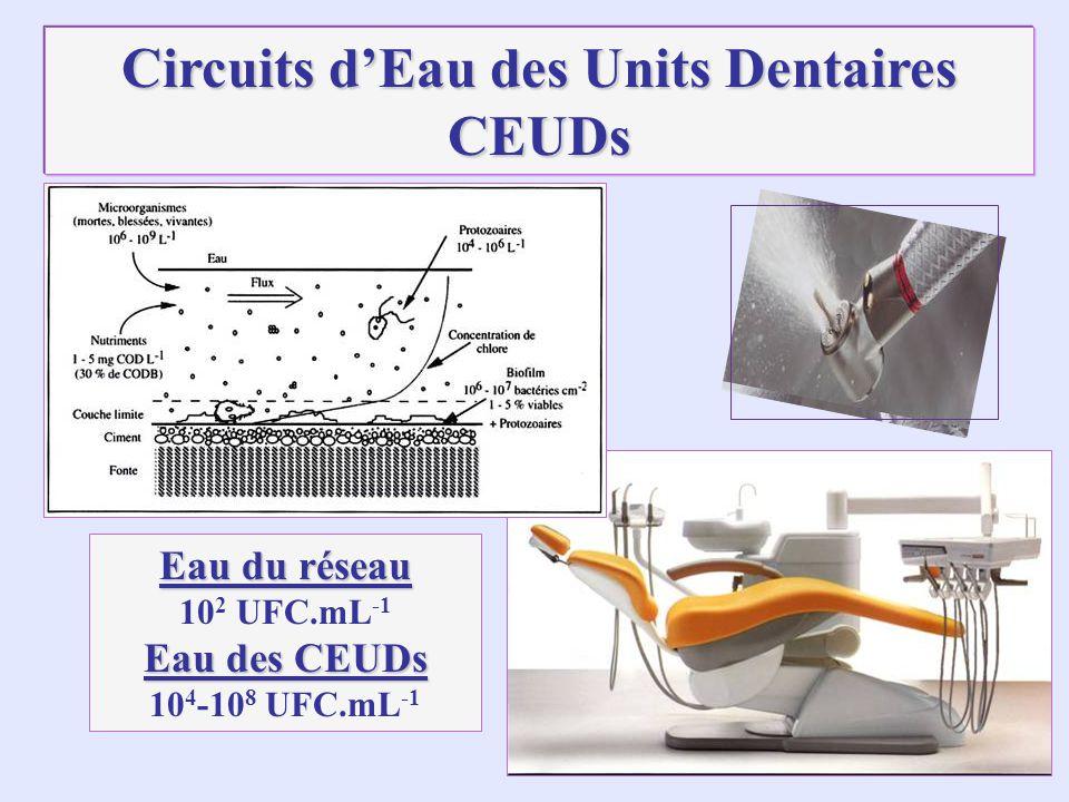 Circuits dEau des Units Dentaires CEUDs Eau du réseau 10 2 UFC.mL -1 Eau des CEUDs 10 4 -10 8 UFC.mL -1