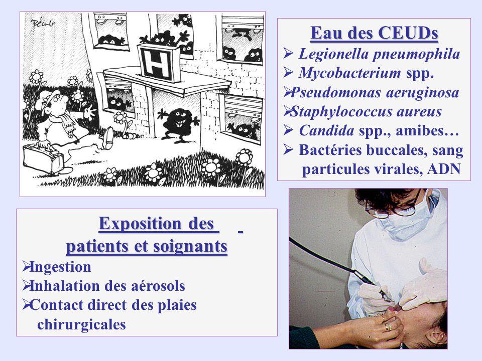 Eau des CEUDs Legionella pneumophila Mycobacterium spp.